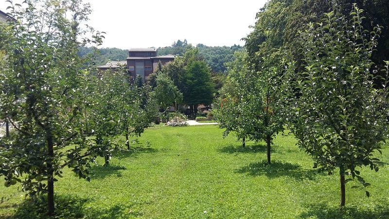 terapevtski vrt (3)